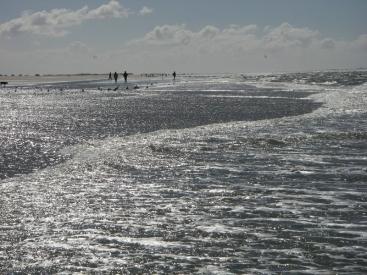 De Deense Waddenzee
