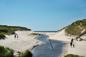 Zuid-Denemarken, Henne Strand