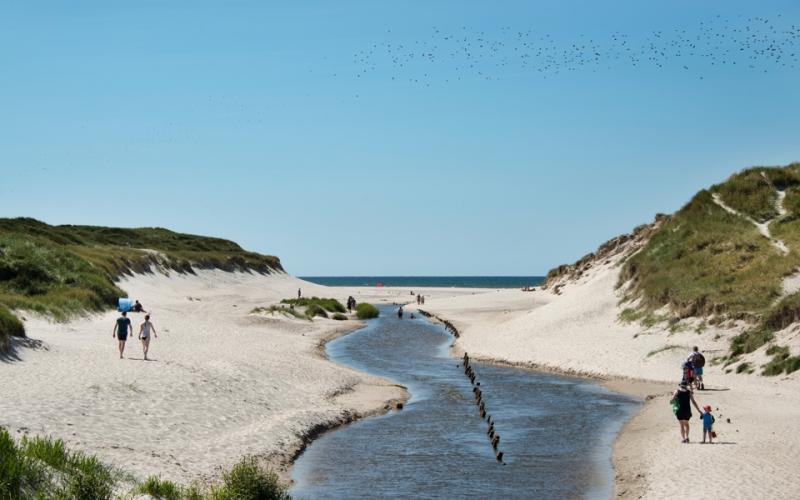 Henne Mølle in West-Jutland
