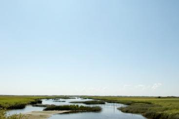 Zuid-Denemarken, Waddenzee