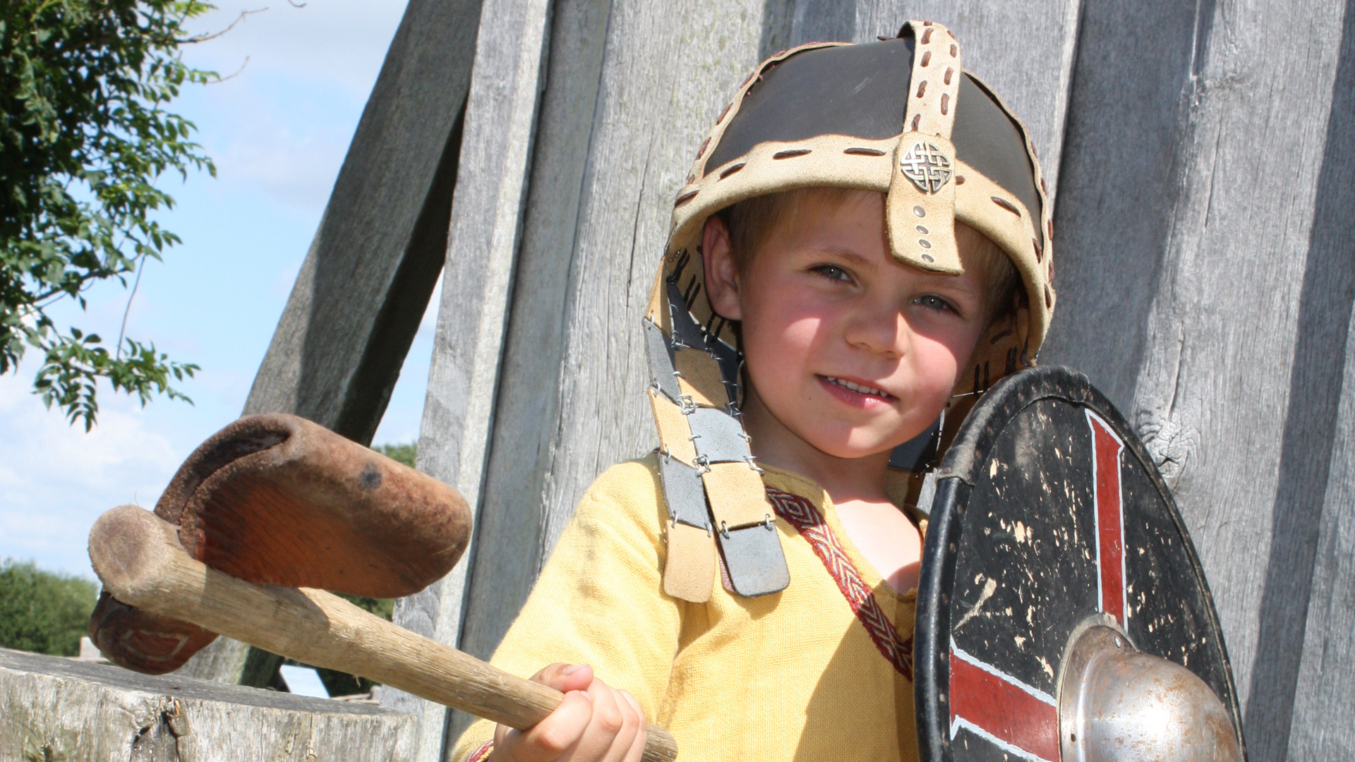 De Vikingschatten van Zuid-Denemarken