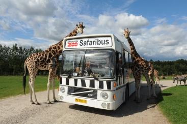 Zuid-Denemarken, Givskud Zoo
