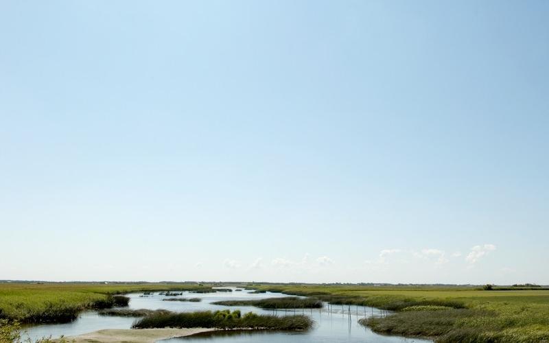 Waddengebied, Zuid-Denemarken