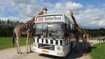 Givskud Zoo, Zuid-Denemarken