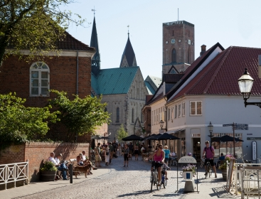 Ribe, de oudste stad van Denemarken