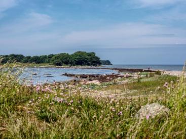 Knudshoved Odde op de Oost-Deense eilanden. Foto: Per Rasmussen