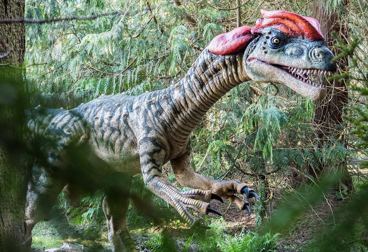Dinotrail op de Oost-Deense eilanden