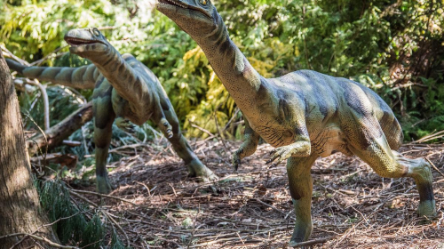 's Werelds grootste Dinosaurus komt naar Denemarken