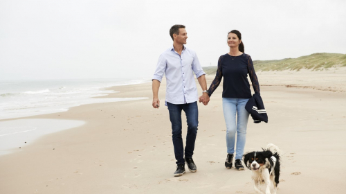 Met de hond op vakantie in Denemarken: handige weetjes