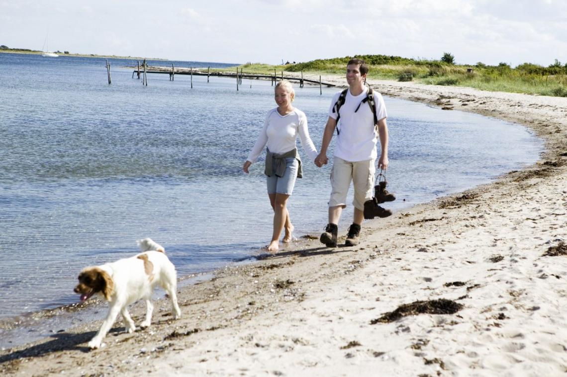 Met de hond naar Denemarken. Foto: Niclas Jessen/VisitDenmark