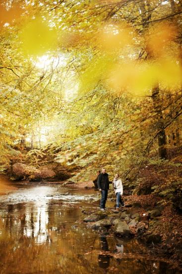 Herfst in Denemarken Fotocredits Niclas Jessen VisitDenmark