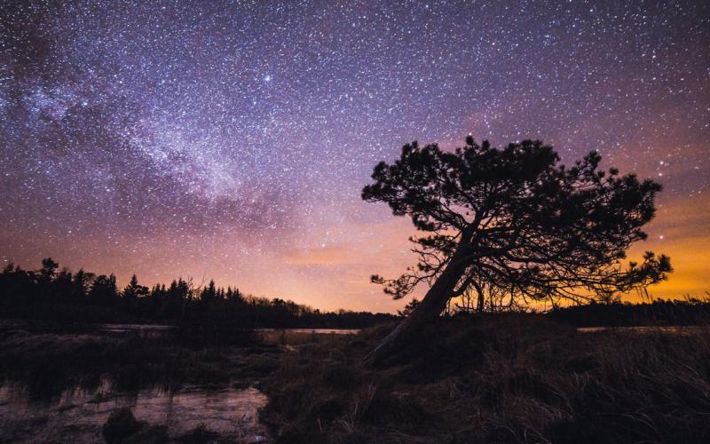 National Park Thy. Foto: VisitDenmark - Rusian Merzlyakov