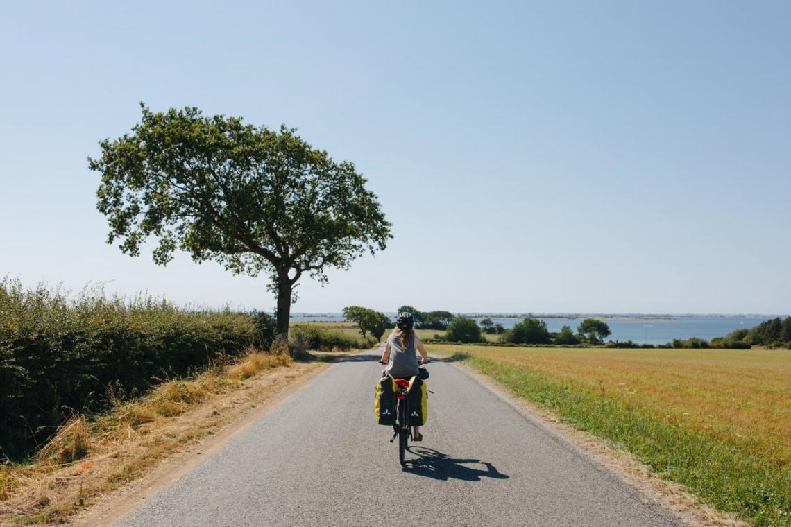 fietsers op de weg. VisitDenmark - Michael Fiukowski & Sarah Moritz