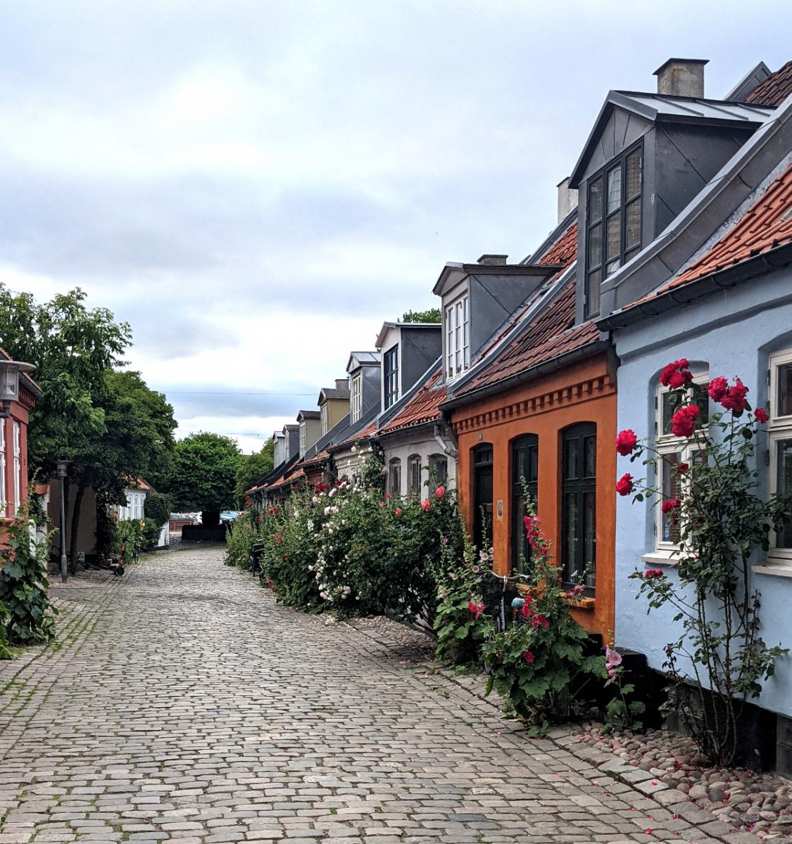 Mollestien Aarhus. Foto: Marlous Lub - Dansk.nl