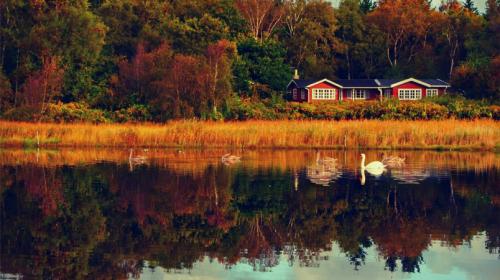 10 herfstvakantie tips voor jouw vakantie in Denemarken